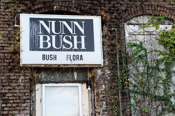 Nun Bush