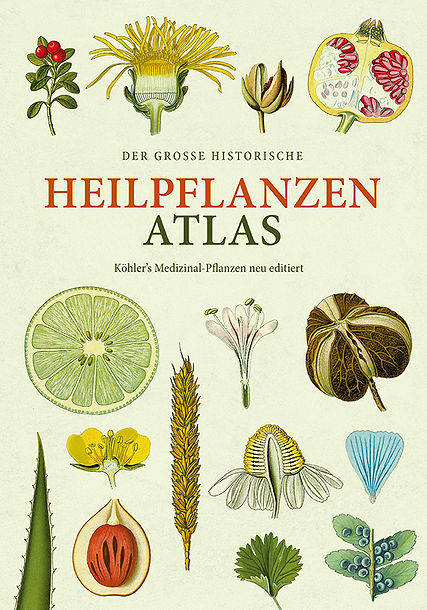 Heilpflanzen-Cover-web.jpg