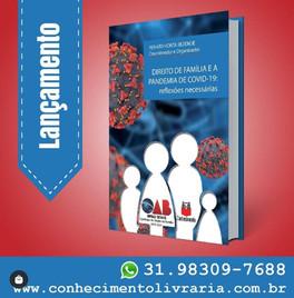 """Livro """"Direito de Família e a pandemia de Covid19"""""""