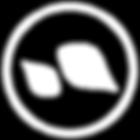 icones dwe-site-05.png