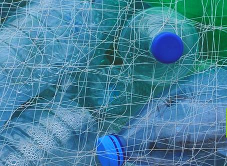 Se você não lavou o lixo reciclável, você só desperdiçou tempo, explicam especialistas.