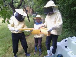 Imkerkurs auf der NABU Bienenwiese mit Sabine