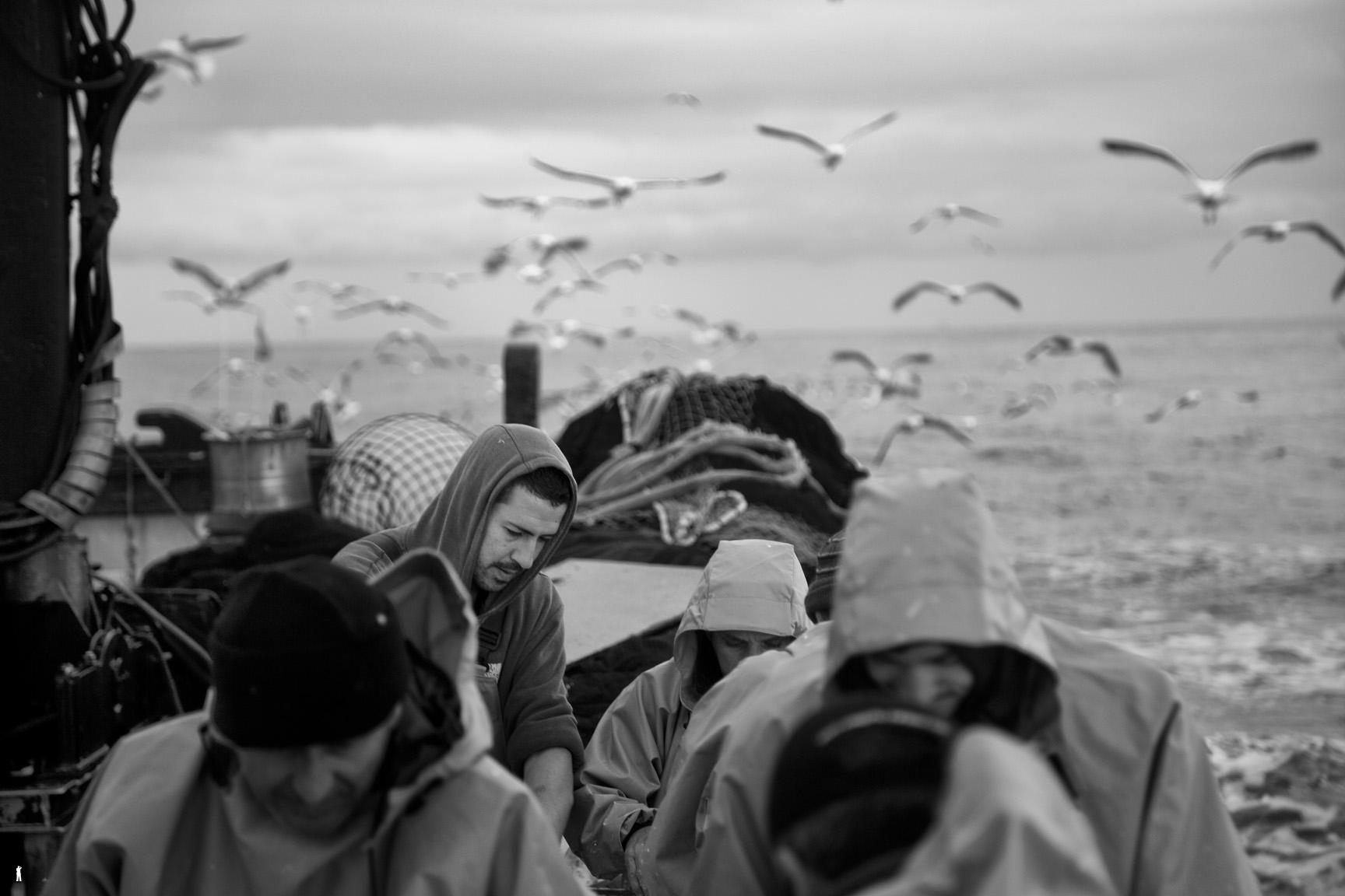 Pesca de cerco