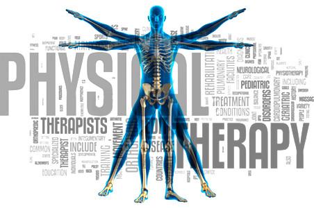 Physical Therapy-Profession