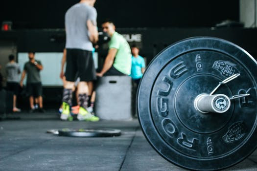 Weightlifting and jump training
