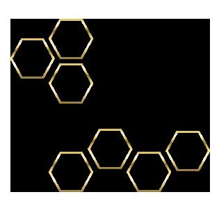 nid d'abeille1.png
