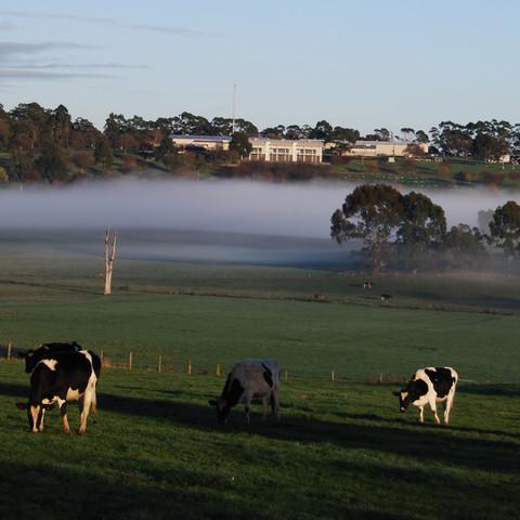 Larnder Park setting
