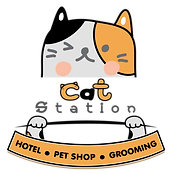 logo cat station 640_640 Px-01.png