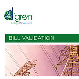 Digren-Bill-Validation-021219-1.jpg