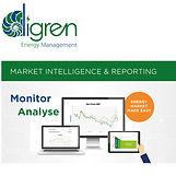 Digren-Market-Intelligence-Reporting-1.j