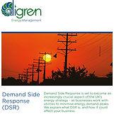 Digren-DSR-Demand-Side-Response-021219-1