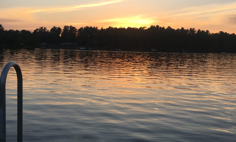 Yellow Birch Sunset.JPG