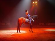 Circus Nock III