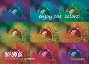 "Karten ""enjoy the colors"""