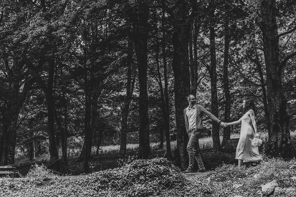 Passeggiando nella foresta