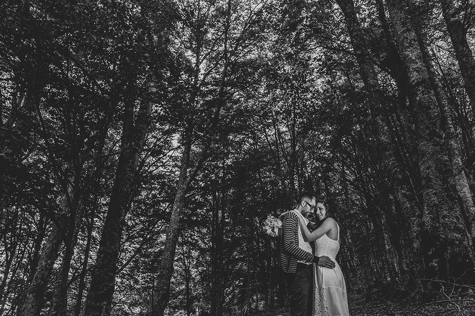 Engagagement love forest