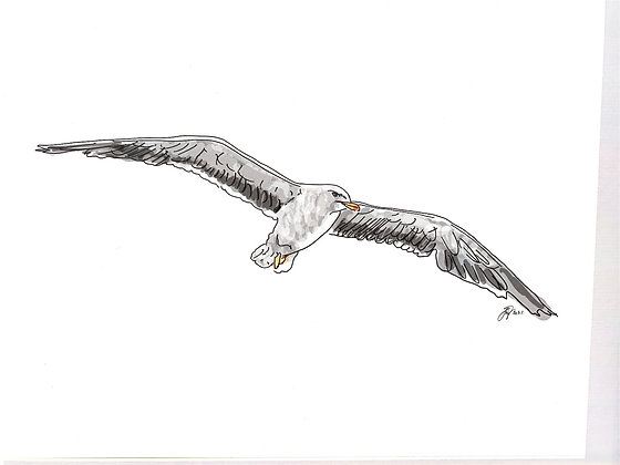 The Seagul (Print)