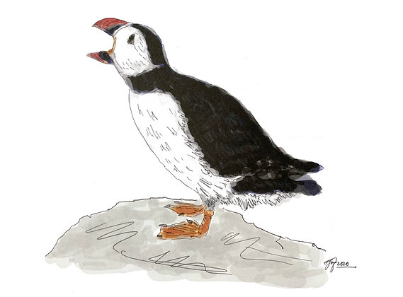 The Puffin (Print)