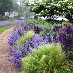 4-Pollinator garden design for sun and shade.