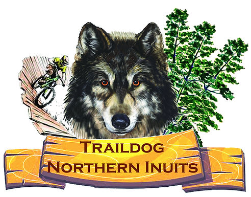 #Traildog Northern Inuits, #Trail Dog Northern Inuits, #Northern Inuit Breeder, #Northern Inuit Breeders, #Northern Inuit Breeders UK, Traildog Northern Inuits, Trail Dog Northern Inuits, Northern Inuit Breeder, Northern Inuit Breeders, Northern Inuit Breeders UK