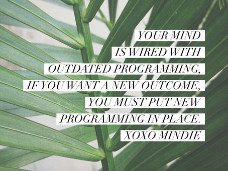 Energy, Vibes and how it impacts your everyday lives. - Mindie Adamos