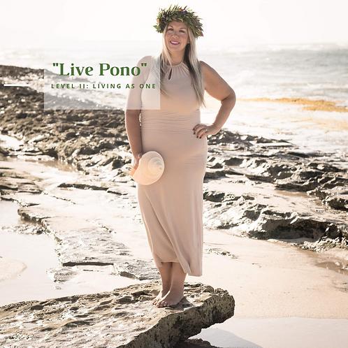 Live Pono II: February 2021