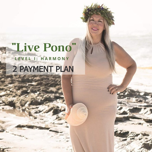 Payment Plan  Live Pono  (Aug Group)