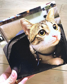 Meow! 😽😻#memoryblocksingapore #theperf