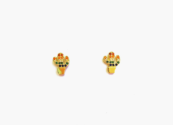 Mini Cactus Rainbow oro