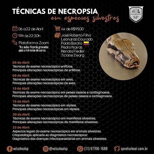1º Curso Online de Técnicas de Necropsia em espécies silvestres.