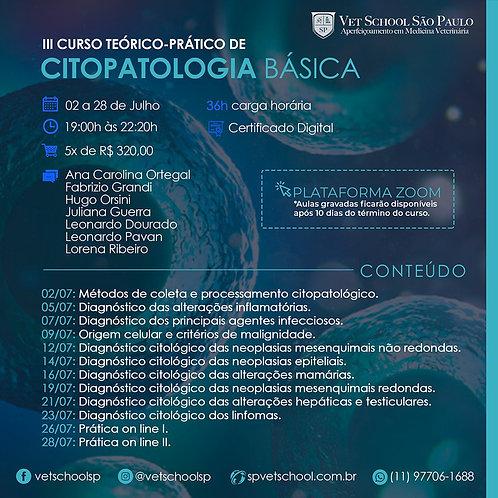 3º Curso Online de Citopatologia Básica - Teórico-prático. Inscrições: