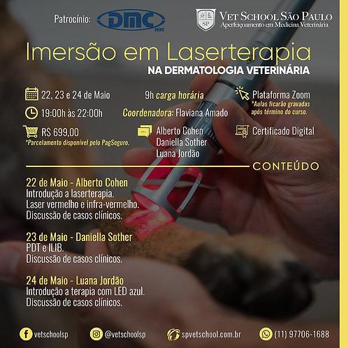 Curso de Imersão em Laserterapia na Dermatologia Veterinária.