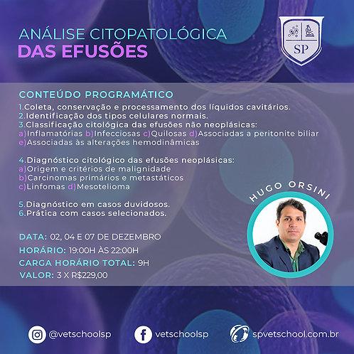 2º Curso Online de Análise Citológica das Efusões - NOVA CARGA HORÁRIA