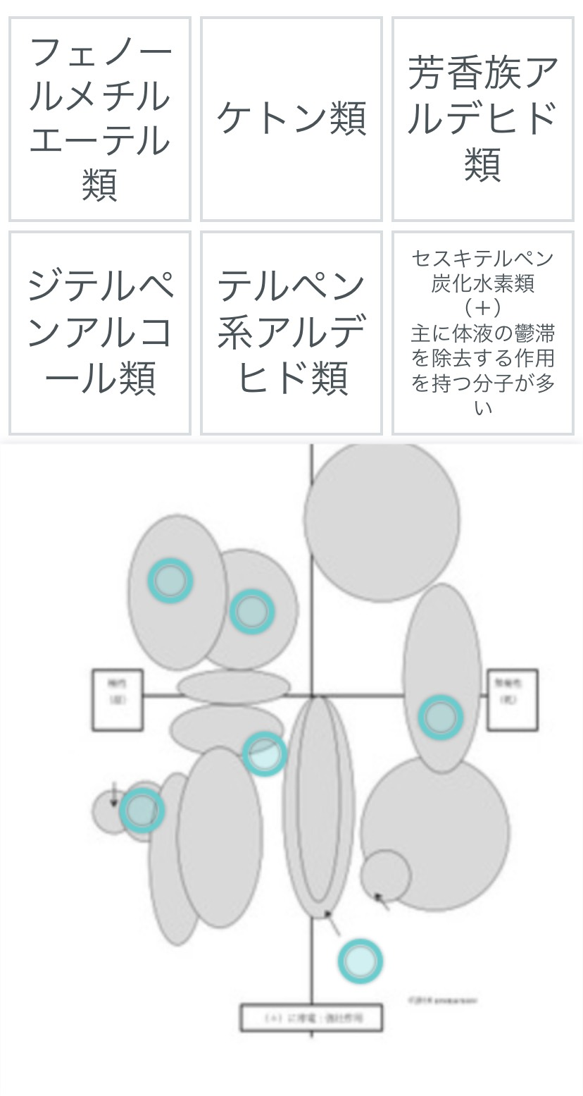 quizlet(アロマクオーレ オリジナル)
