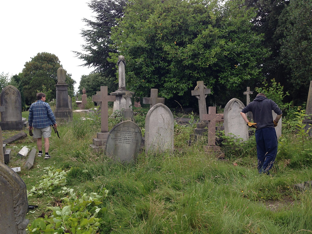People removing cherry saplings from the meadow in the Kingston Cemetery