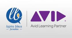 avid-learning-partner_v2