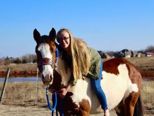 Fancy- GHO horse Model