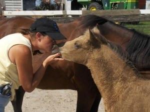 Healing Hearts with Horses