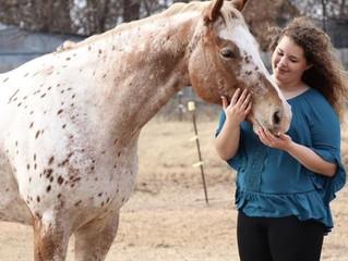 Ellie-GHO Horse Model