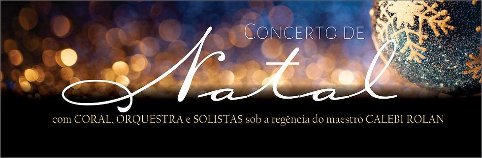 arte site concerto2.jpg