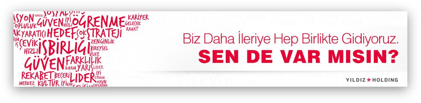 Pladis Banner Design