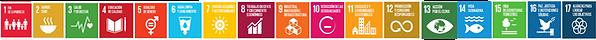 Linea_ODS_Página_web_2020.png