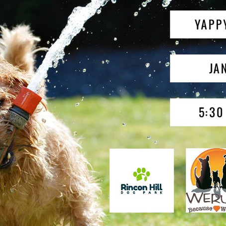New Year, New Yappy Hour