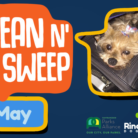 UPDATED DATE - Clean 'n Sweep Rincon Hill Dog Park