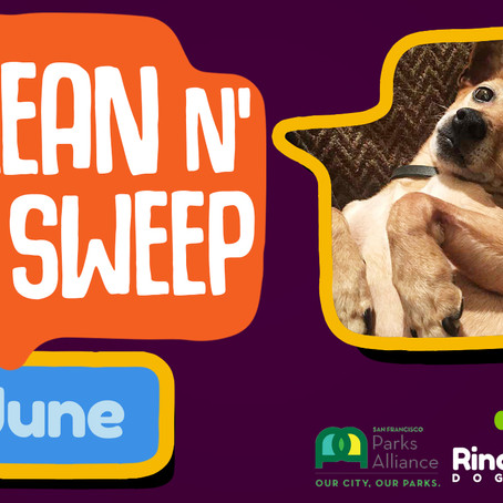 Clean 'n Sweep Rincon Hill Dog Park