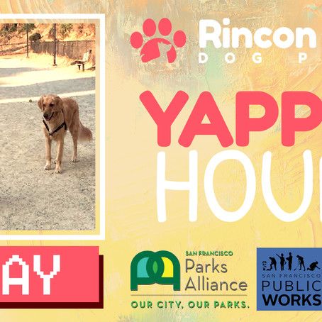 Who's Coming to Yappy Hour?