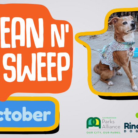Join Us for Clean n' Sweep