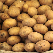 Rotkartoffeln