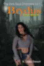 N-Lopez-Stewart-Brydus-Novel-Cover.jpg
