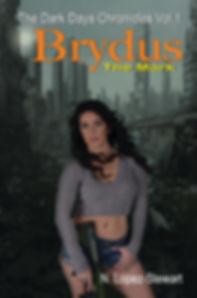 N Lopez-Stewart The Dark Days Chronicles Brydus the Mark